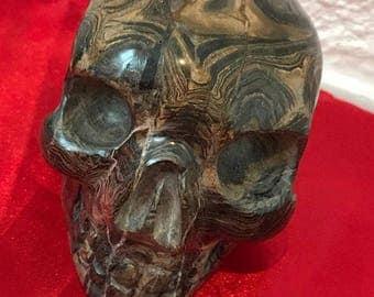 Stromatolite skull