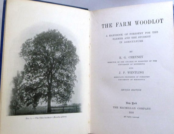 The Farm Woodlot: A Handbook of Forestry for the Farmer and the Student in Agriculture 1926 by E.G. Cheynew; J.P. Wentling