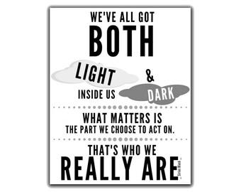 Sirius Black. Sirius Black Quote. Sirius Black Art. Sirius Black Poster. We've all got both light and dark inside us. Order of the Phoenix.