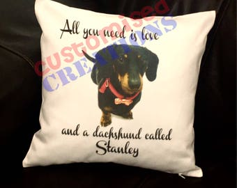 All you need is love and dachshund / dog called cushion!
