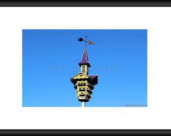 Bird House, Photography, Free Shipping, Print, Framed Print, Canvas Wrap, Canvas with floating Frame, Nature pic, Wall Art, Home Design, Art