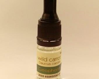 wild carrot pure essential oil (Daucus carota) 5ml