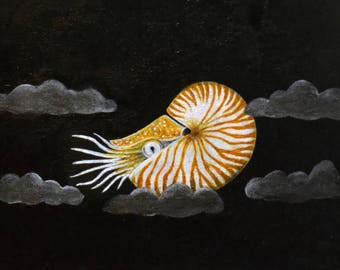 Nautilus, Sealife, Clouds, Print