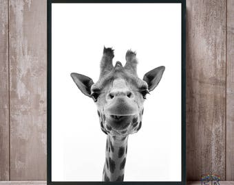 Giraffe Print, Giraffe Wall Art, Black and White, Nursery Decor, Safari Animal, Kids Room Decor, Large Poster, Animal Print, Giraffe Photo