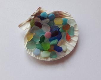 50 mini sea glass / French sea glass