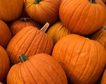 Pumpkin Howden 25+ seeds - heirloom seeds - vegetable seeds - garden seeds - pumpkin seeds - howden pumpkin seeds - jack o' lantern seeds