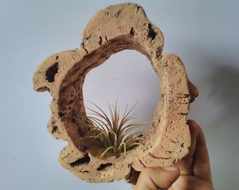 Cork Bark Hanging Air Plant Holder Air plant Ring Cradle Hanger Tree Bark Crafts Terrarium Wall Living Home Decor Hanging Planter Plant Vase