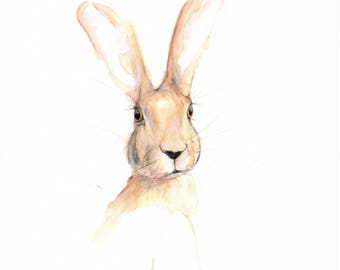 Hare Ladyship Signed Limited Edition Print of my Original Water Colour Painting
