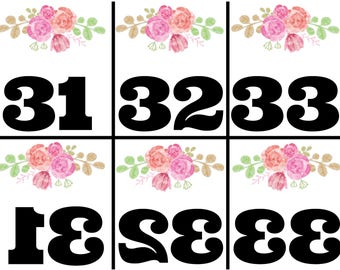 Simple Floral Live Sale Numbers 1-200. Mirrored/reversed numbers for online sales. Instant Download.