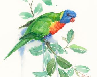 "Rainbow Lorikeet print of original watercolour painting size A5 5.8""x8.3"" print, australian bird art print, parrot print, wildlife print"