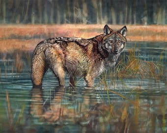 Wolf Portrait in acrylics on canvas.