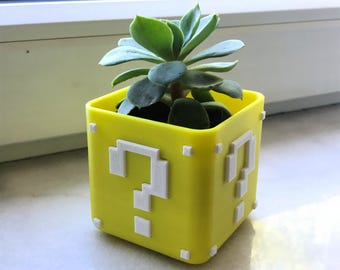 Super Mario Bros inspired Planter - 3D Printed