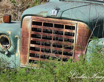 Abandoned Truck Print, Truck Photo, Landscape  Photography, Country Decor, Wall Art, Home Decor, Truck Greeting Card/ Note Cards, Rustic