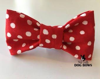 Red Polka Dot Dog Bow Tie - Red dog bowtie - Valentine's Day dog bowtie - Polka Dot dog bow tie - Red dog bow tie