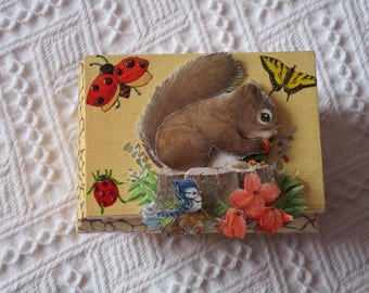 Country worries box with squirrel in 3D