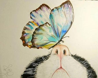 Portrait. Drawing. Butterfly landed on the nose of a cat