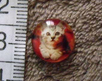 cabochon glass cat theme 12mm