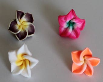 1 set of 4 flowers of Polynesia, 15 mm polymer ref No. 1