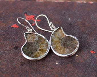 Natural Sea Shell Sterling Silver Earrings