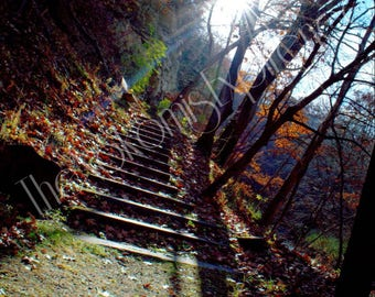 Autumn's staircase