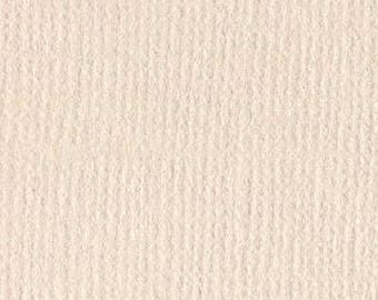 Bazzill textured canvas 30 x 30 cm - Ref 11110942 Twig scrapbooking paper