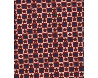 patchwork fabric American stars 11230611 tiles