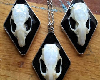 Real Rat Skull pendant necklace