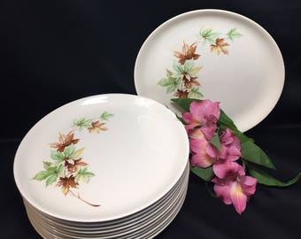 Dinner Plates - Vintage Maple Leaf pattern by Salem 1960's - set of 6