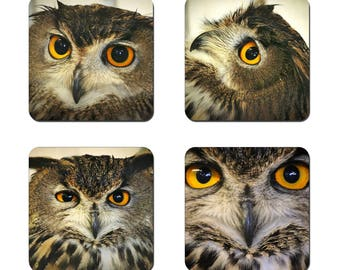 Set of 4 Owl drinks coasters featuring award winning photography by UniquePhotoArts.