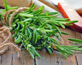 Rosemary seeds, NON GMO
