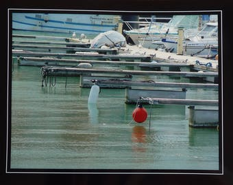 Photo docks in a large harbor plan