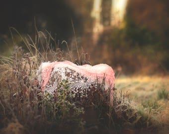 Winter Frost Newborn Girl Digital Backdrop