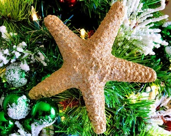Sand-Molded Starfish Ornament
