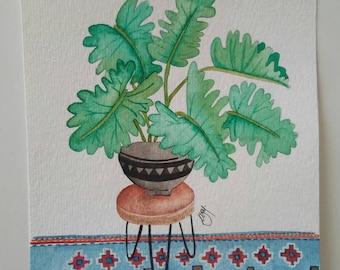Plant and morrocan rug