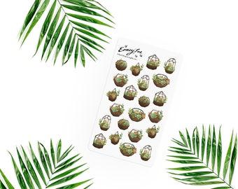 Succulent terrarium Stickerset-Watercolor sticker-pretty planning-scrapbooking-bullet journaling
