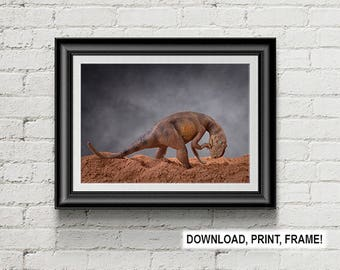 Dinosaur print,Prehistoric Art,Paleontology Art,Jurassic Decoration,Dinosaur poster,Kids Room,Room Decor,Office decor,Yangchuanosaurus