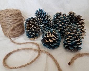 Natural Carolina Pinecones, Set of 8, Blue with Metallic Gold, Christmas Decor