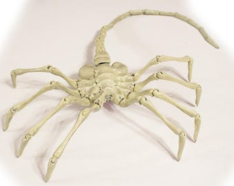 Alien Facehugger (Life Size, Posable) Replica