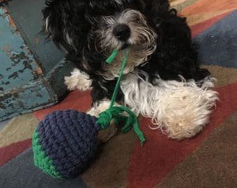 Ellie Mae Crowder Dog Ball