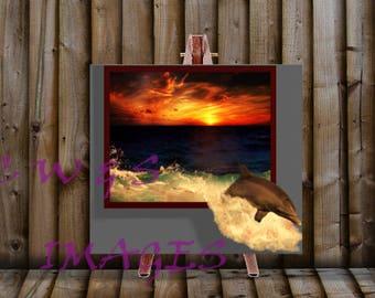 Dolphin Escape (canvas)