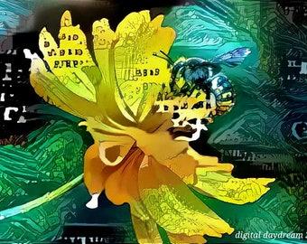Bee in Bloom 2