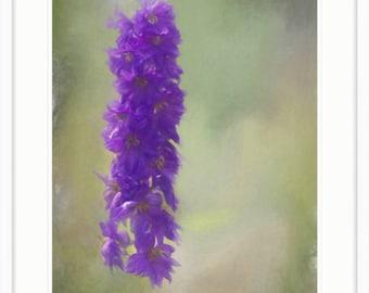 Purple Delphinium Painterly Flower Photograph Digital Download
