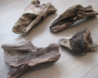 Driftwood lot (4 pieces)