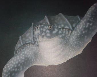 4 Turtle Prints by L.E. Logan numbered prints, leatherback, hatchlings, kemps