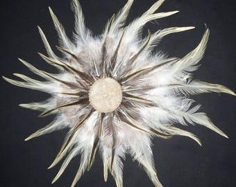 Ornament, Hair pin