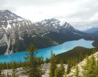 Canada, Digital Print, Wall Art, Artwork, Photography, Nature, Canvas, Print, Download, Peyto Lake Canada