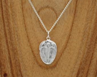 Trilobite Pendant - Sterling Silver