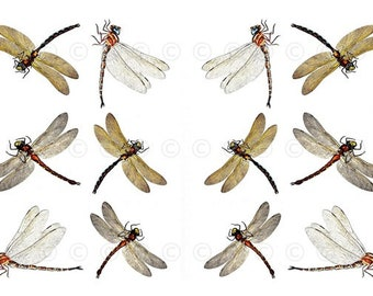 Dragonfly Water-Slide Decals, Dragonfly Wedding and Party Decals, Decorate Flame-less Candles, Soap, Glass, Home Decor, Furniture etc...