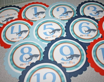 SHARK Baby's 1st Year Tags / Shark 1st Year Tags / Shark First Year Tags / Shark Monthly Photo Tags / Shark Birthday Party / Shark Party