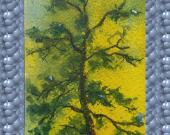 ACEO Original Art in Watercolors of a Treetop in Sun, Imagine Tree Climbing, Looking Up, Seeing The Top of the Tree and Smiling At the World